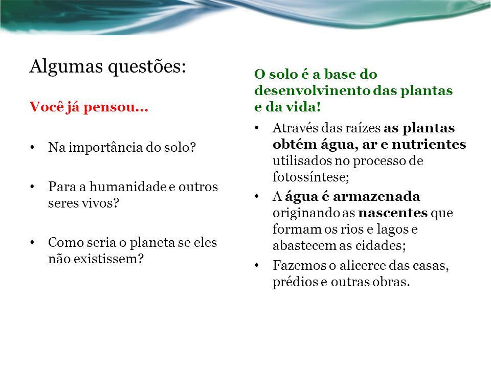 Algumas questões: Você já pensou... O solo é a base do desenvolvinento das plantas e da vida! Na importância do solo