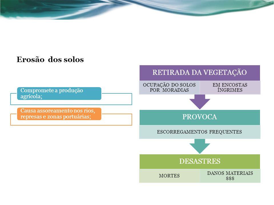 Erosão dos solos Compromete a produção agrícola;