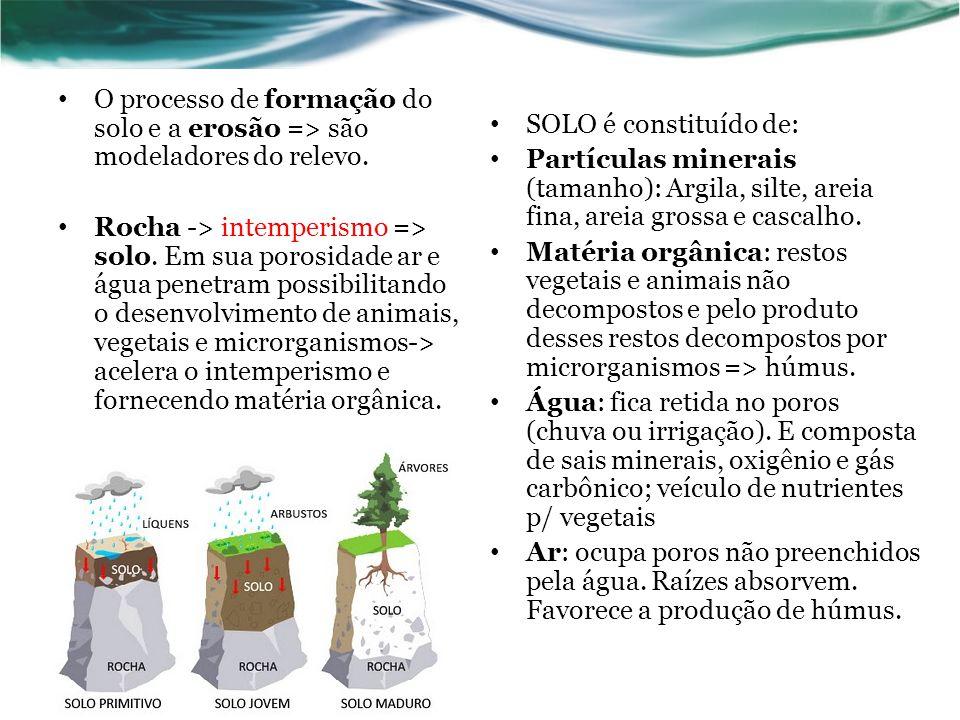 O processo de formação do solo e a erosão => são modeladores do relevo.