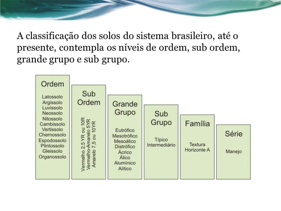 A classificação dos solos do sistema brasileiro, até o presente, contempla os níveis de ordem, sub ordem, grande grupo e sub grupo.