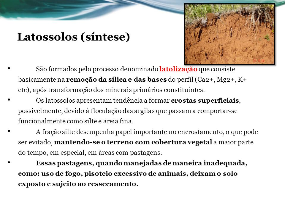 Latossolos (síntese)