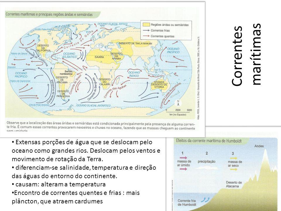 Correntes marítimas Extensas porções de água que se deslocam pelo oceano como grandes rios. Deslocam pelos ventos e movimento de rotação da Terra.