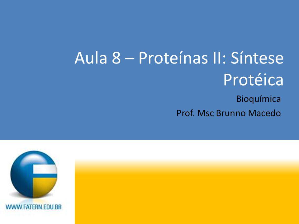 Aula 8 – Proteínas II: Síntese Protéica