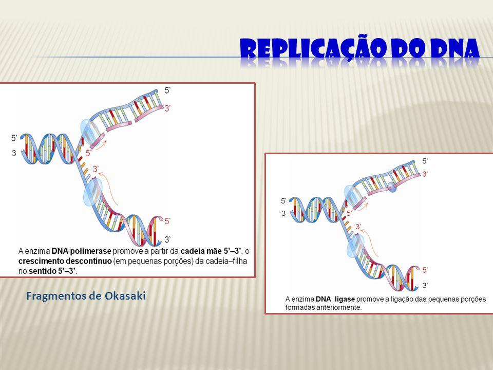 REPLICAÇÃO DO DNA Fragmentos de Okasaki