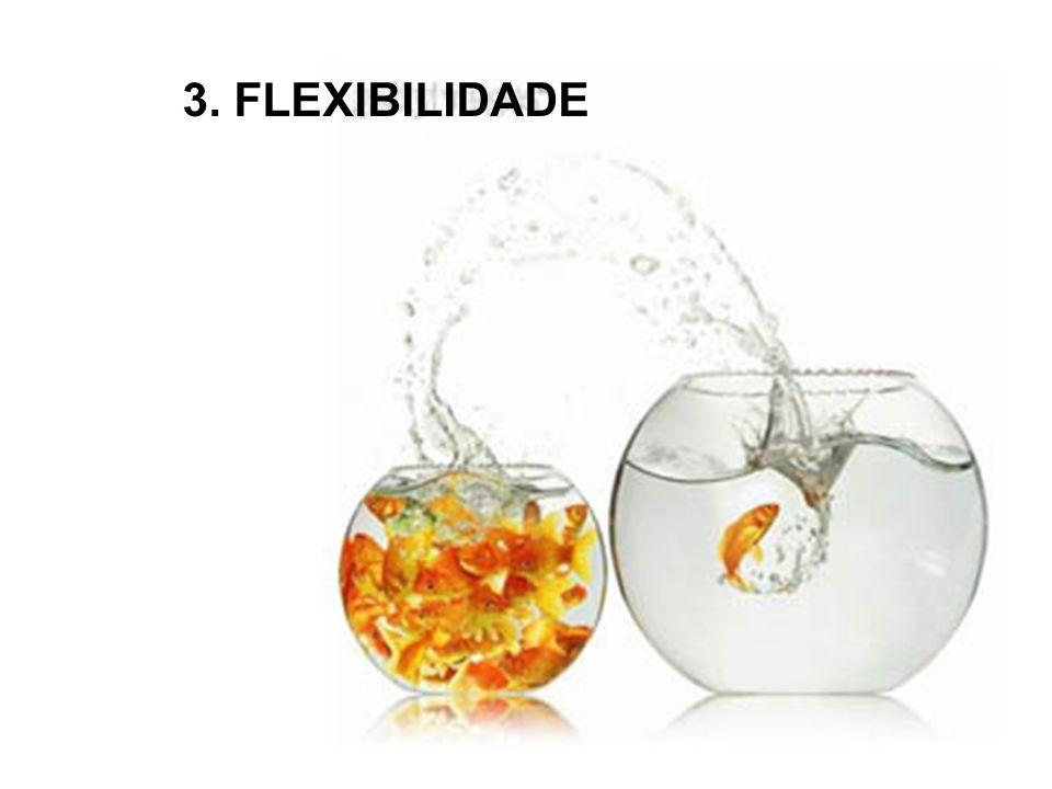 3. FLEXIBILIDADE