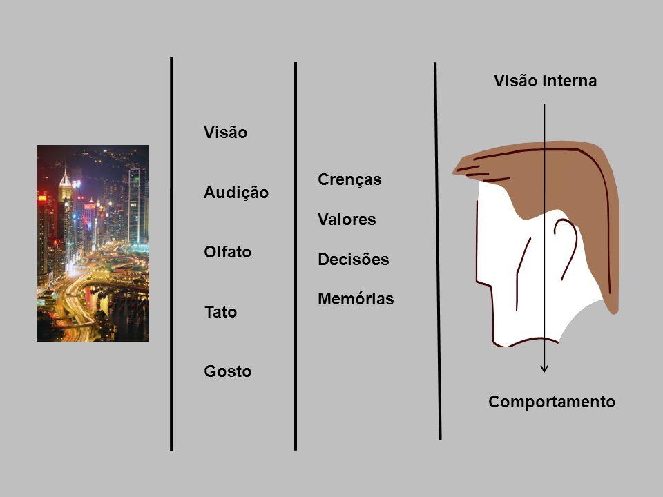 Visão interna Visão Audição Olfato Tato Gosto Crenças Valores Decisões Memórias Comportamento