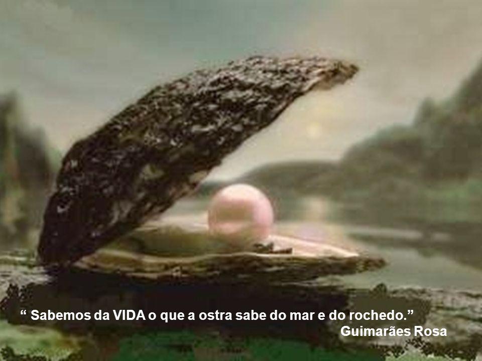 Sabemos da VIDA o que a ostra sabe do mar e do rochedo.