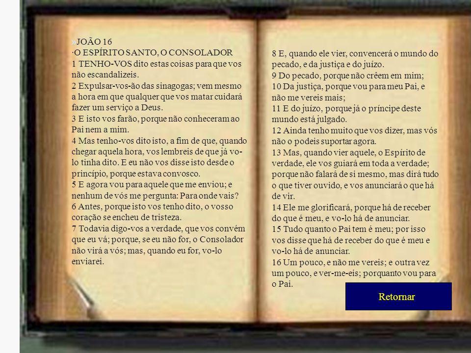 Retornar »JOÃO 16 ·O ESPÍRITO SANTO, O CONSOLADOR