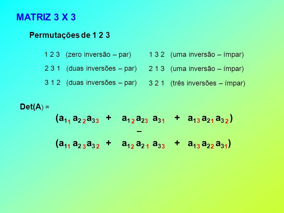 MATRIZ 3 X 3 (a1 a2 a3 + a1 a2 a3 + a1 a2 a3 )