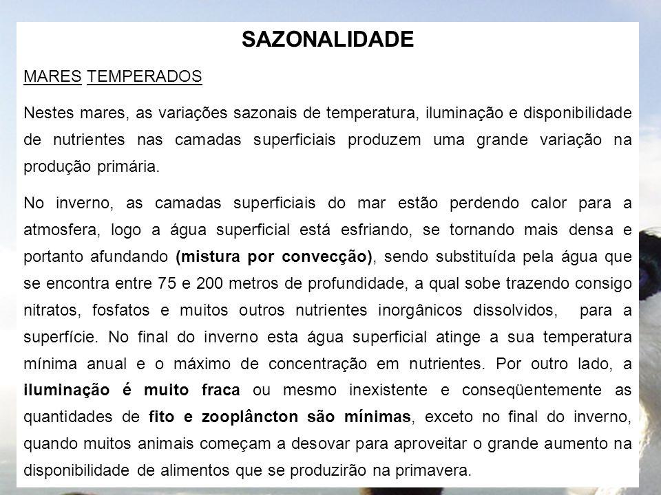 SAZONALIDADE MARES TEMPERADOS
