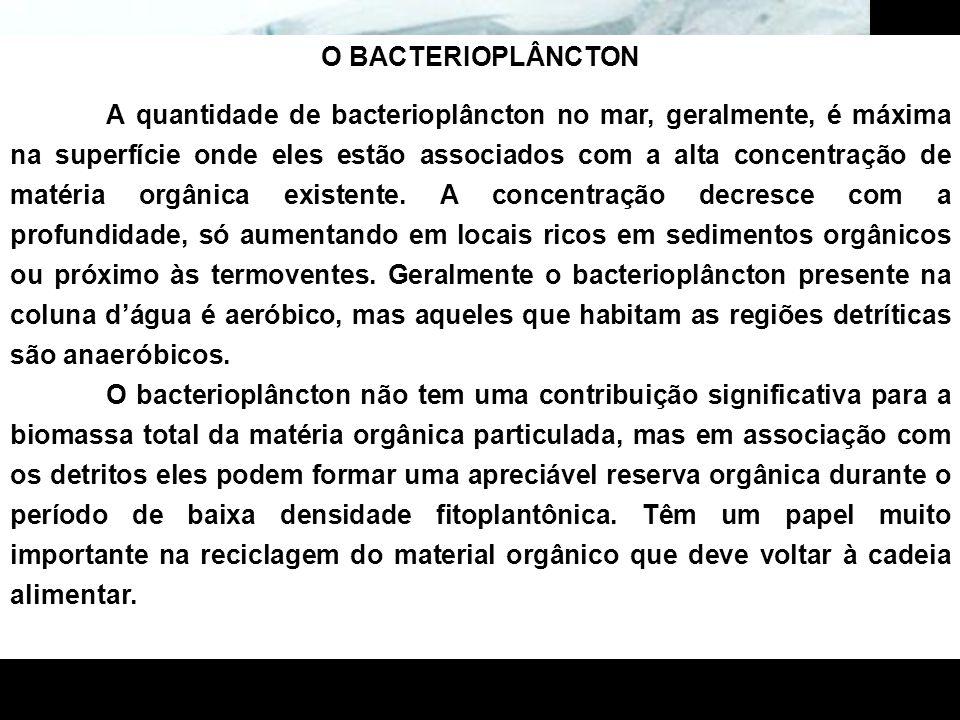 O BACTERIOPLÂNCTON