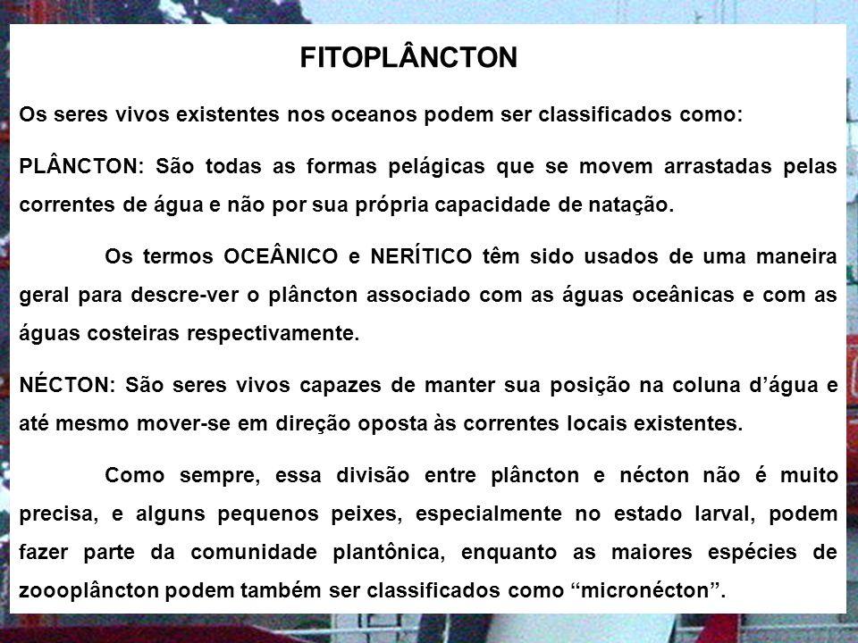 FITOPLÂNCTON Os seres vivos existentes nos oceanos podem ser classificados como: