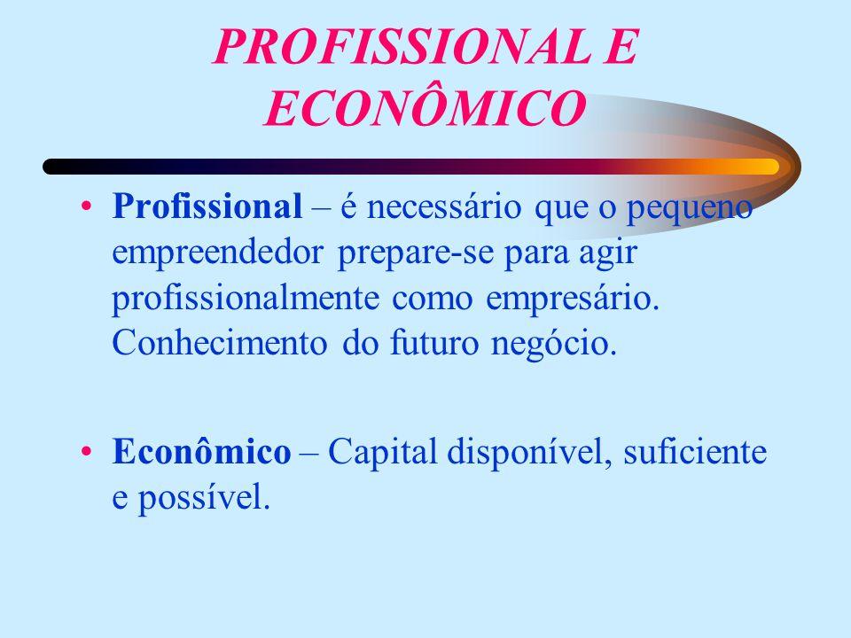 PROFISSIONAL E ECONÔMICO