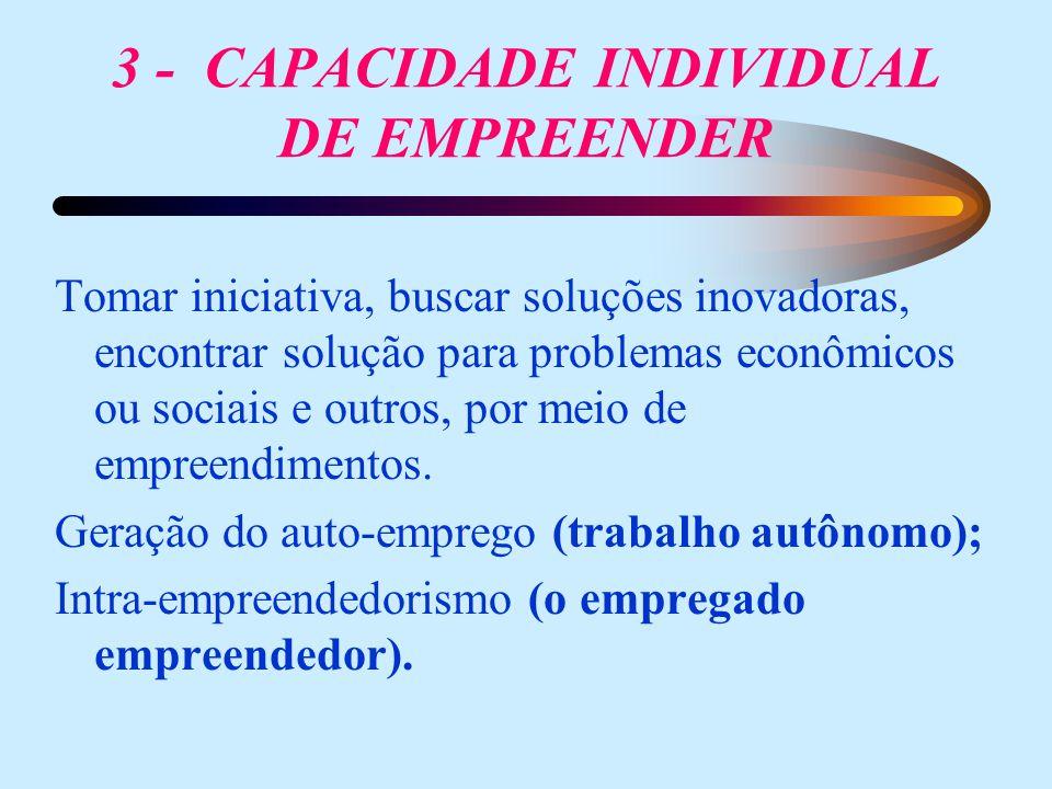 3 - CAPACIDADE INDIVIDUAL DE EMPREENDER