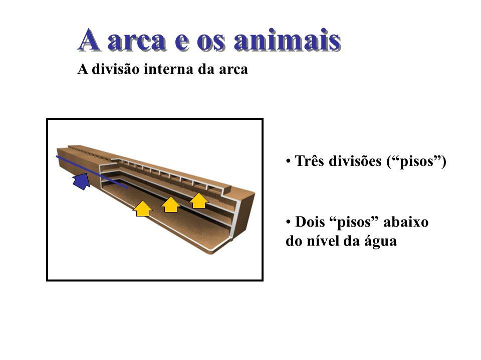 A arca e os animais A divisão interna da arca Três divisões ( pisos )
