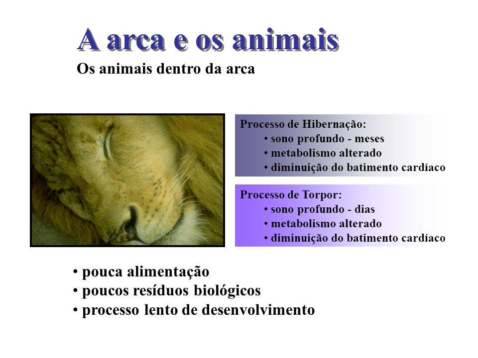 A arca e os animais Os animais dentro da arca pouca alimentação