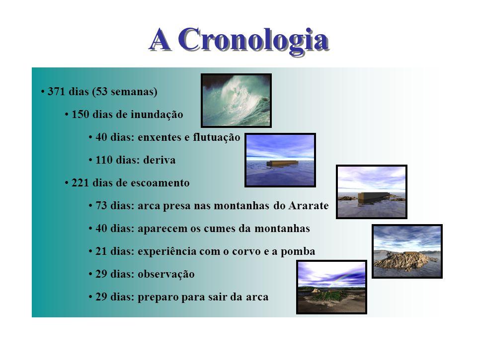 A Cronologia 371 dias (53 semanas) 150 dias de inundação