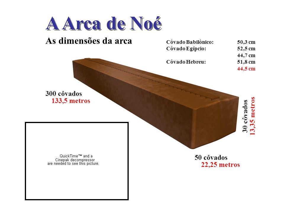 A Arca de Noé As dimensões da arca 300 côvados 133,5 metros