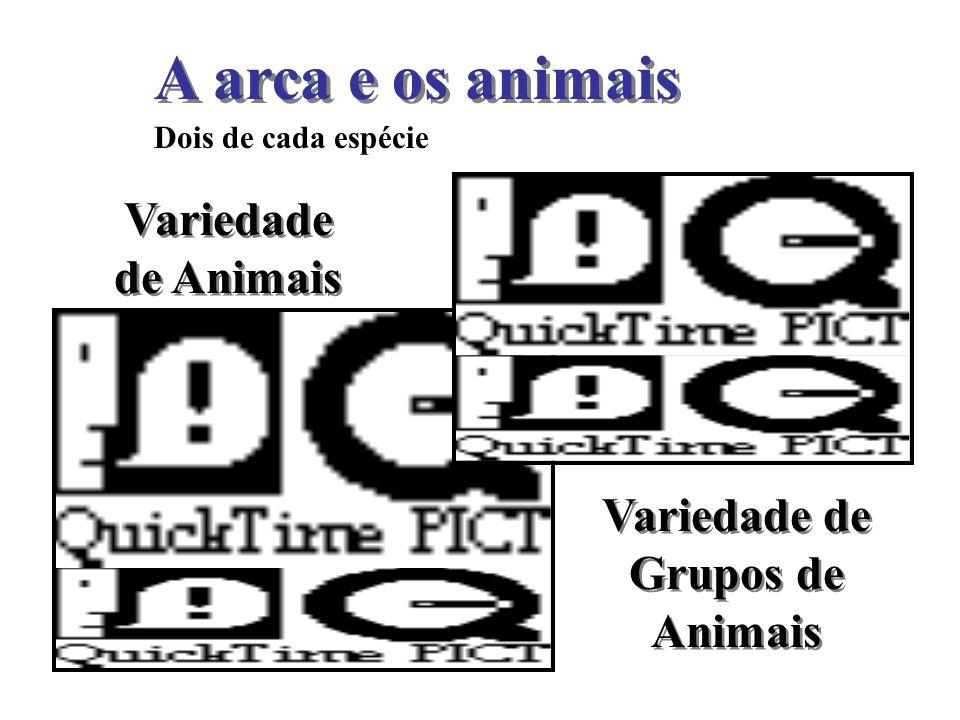 Variedade de Grupos de Animais
