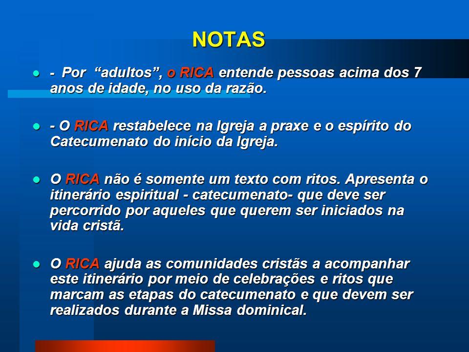 NOTAS - Por adultos , o RICA entende pessoas acima dos 7 anos de idade, no uso da razão.