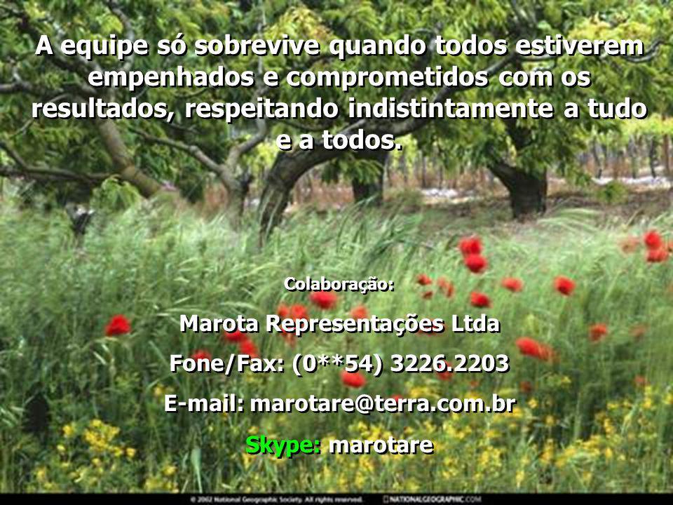 Marota Representações Ltda E-mail: marotare@terra.com.br