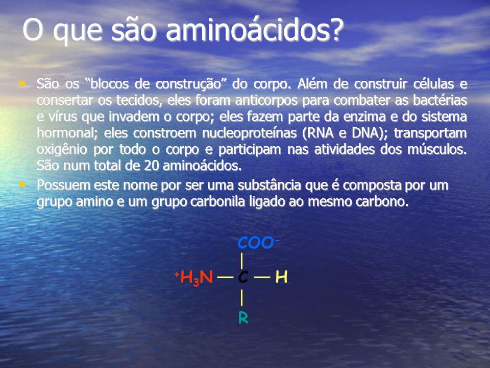 O que são aminoácidos COO- C H R +H3N