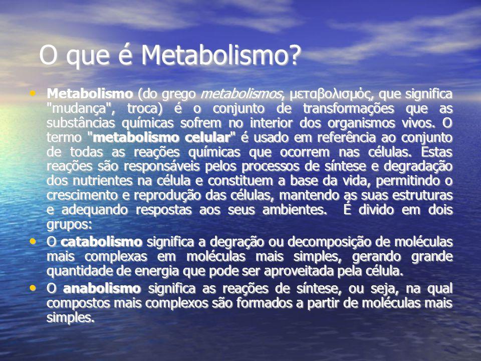 O que é Metabolismo
