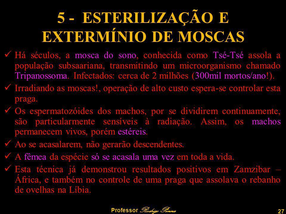 5 - ESTERILIZAÇÃO E EXTERMÍNIO DE MOSCAS