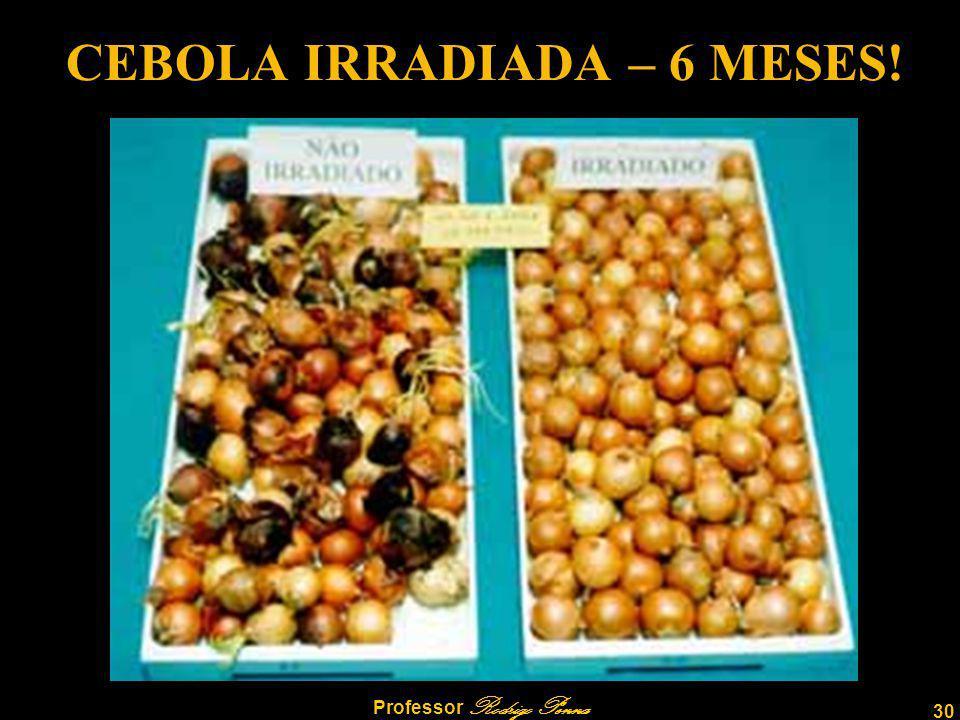CEBOLA IRRADIADA – 6 MESES!
