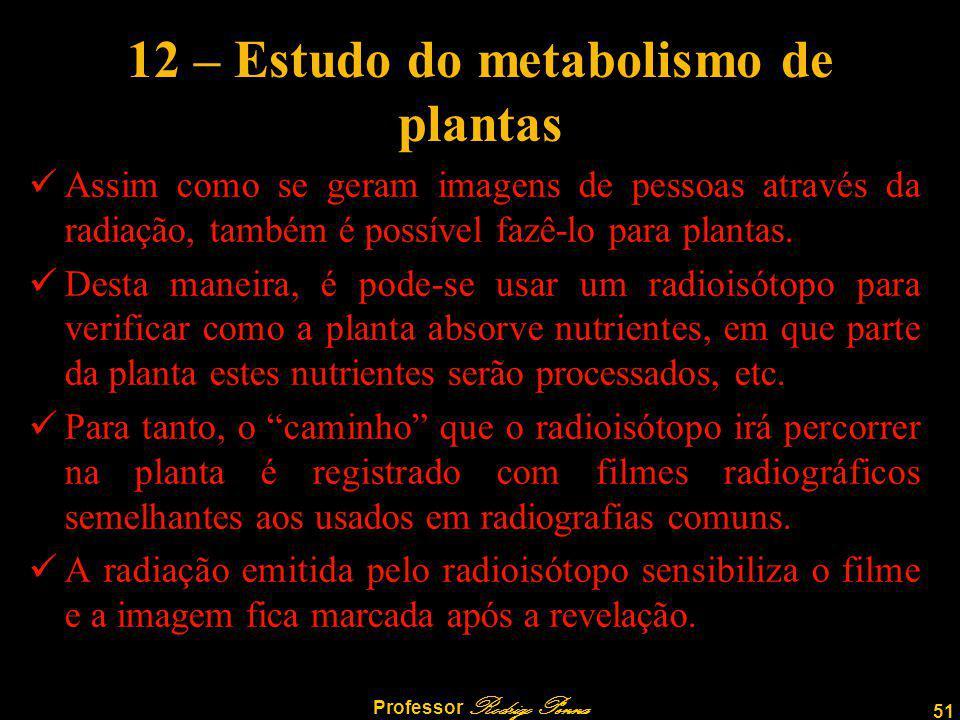 12 – Estudo do metabolismo de plantas