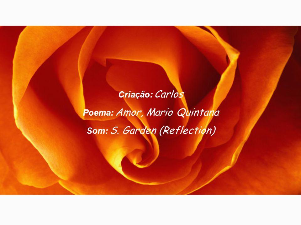 Poema: Amor, Mario Quintana Som: S. Garden (Reflection)