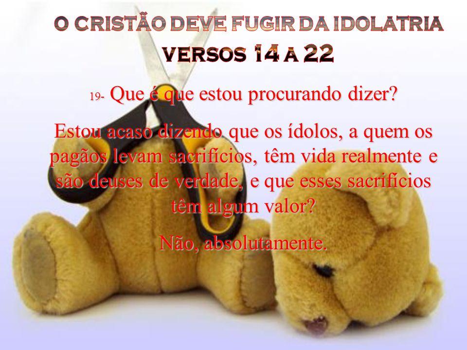 o cristão deve fugir da idolatria