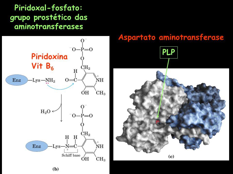 Aspartato aminotransferase