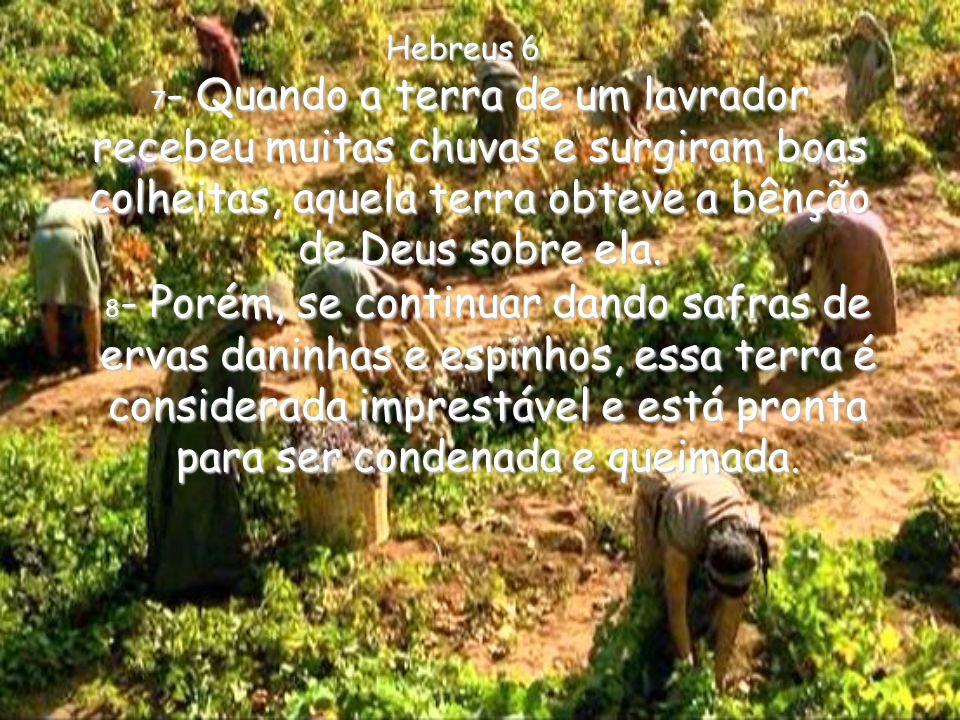 Hebreus 6 7- Quando a terra de um lavrador recebeu muitas chuvas e surgiram boas colheitas, aquela terra obteve a bênção de Deus sobre ela.