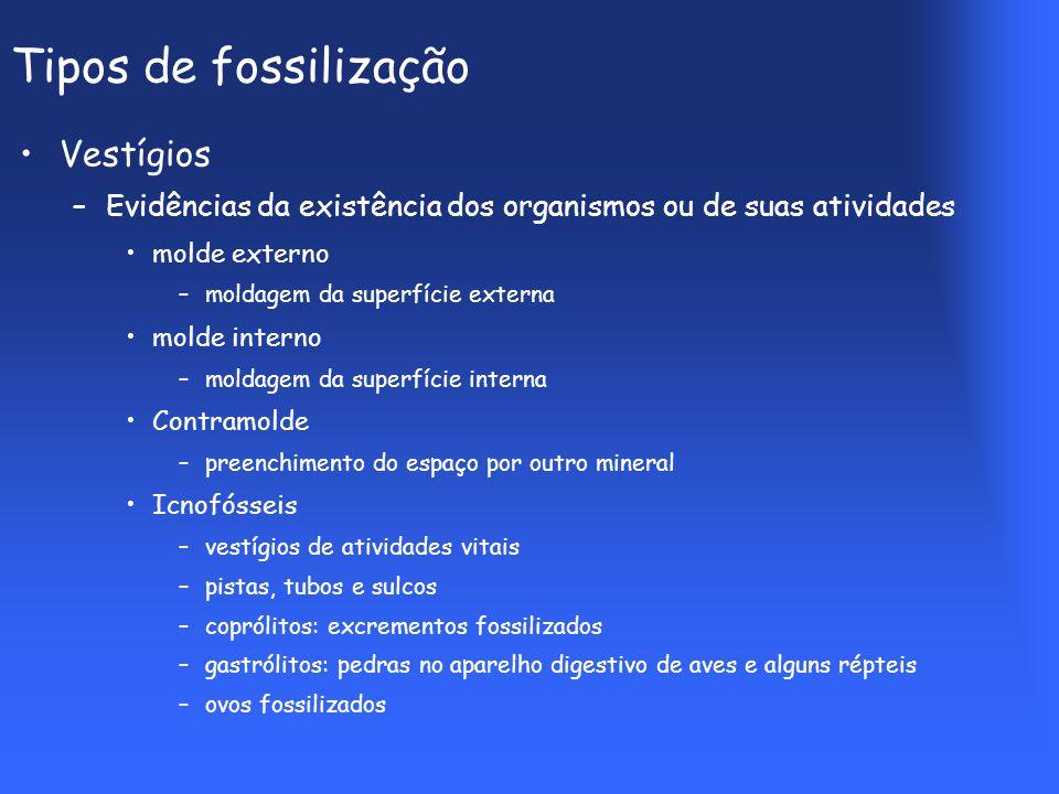 Tipos de fossilização Vestígios