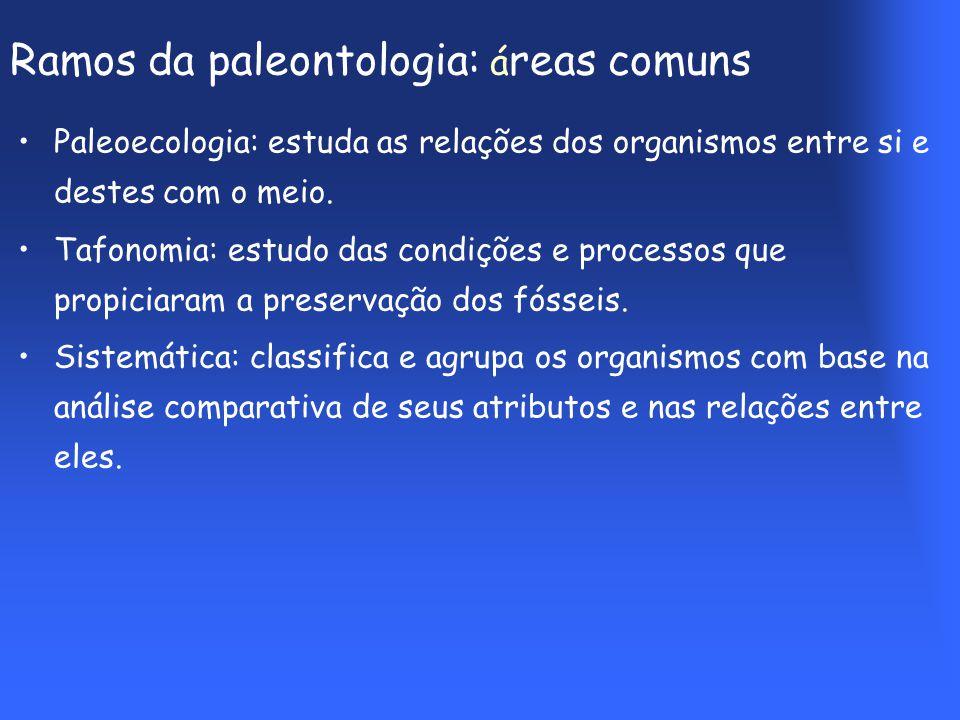 Ramos da paleontologia: áreas comuns