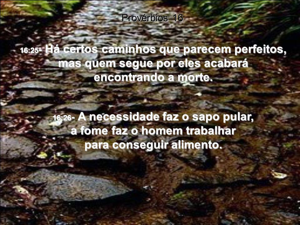 Provérbios 16 16:25- Há certos caminhos que parecem perfeitos, mas quem segue por eles acabará encontrando a morte.