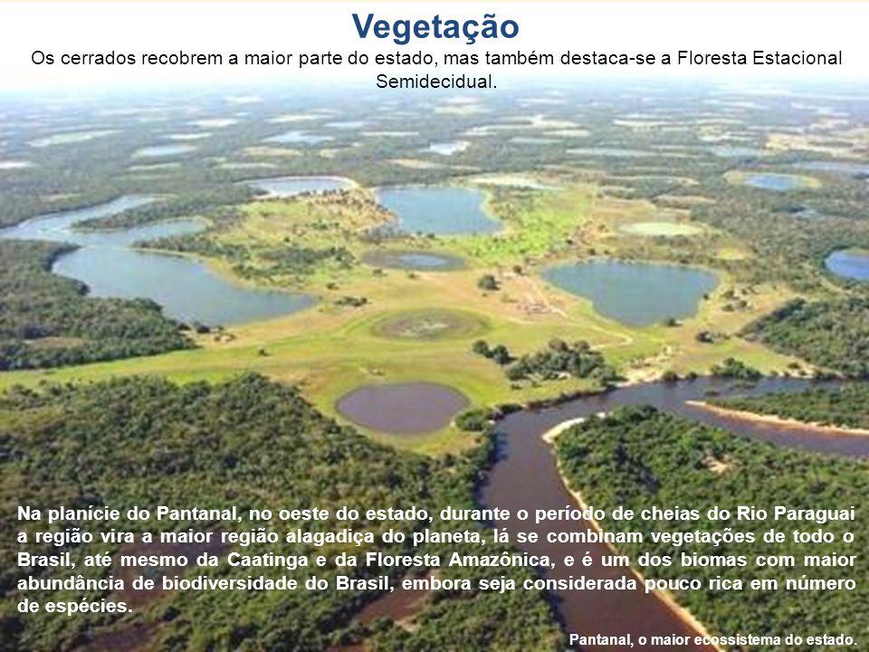 Vegetação Os cerrados recobrem a maior parte do estado, mas também destaca-se a Floresta Estacional Semidecidual.
