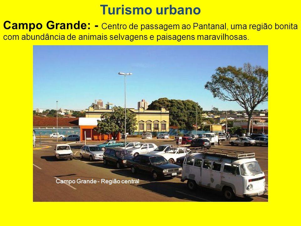 Campo Grande - Região central