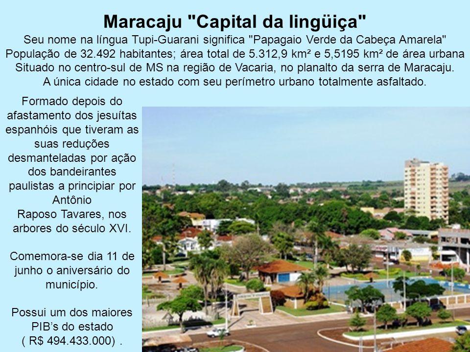 Maracaju Capital da lingüiça Seu nome na língua Tupi-Guarani significa Papagaio Verde da Cabeça Amarela População de 32.492 habitantes; área total de 5.312,9 km² e 5,5195 km² de área urbana Situado no centro-sul de MS na região de Vacaria, no planalto da serra de Maracaju. A única cidade no estado com seu perímetro urbano totalmente asfaltado.