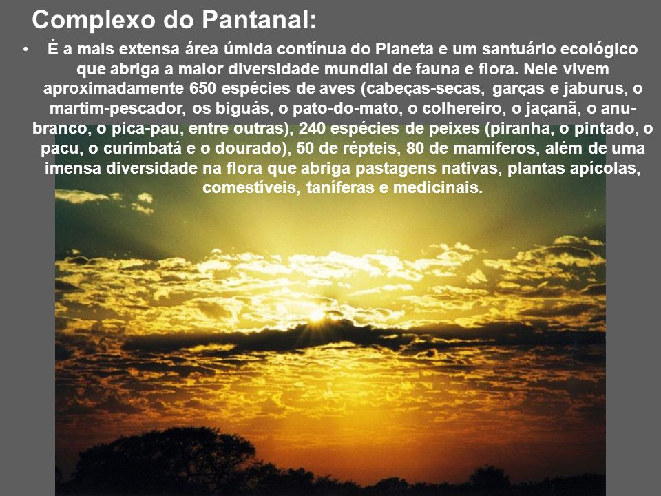 Complexo do Pantanal: