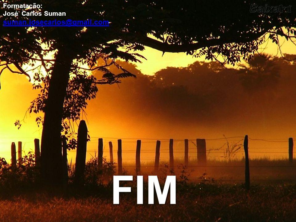 Formatação: José Carlos Suman suman.josecarlos@gmail.com FIM