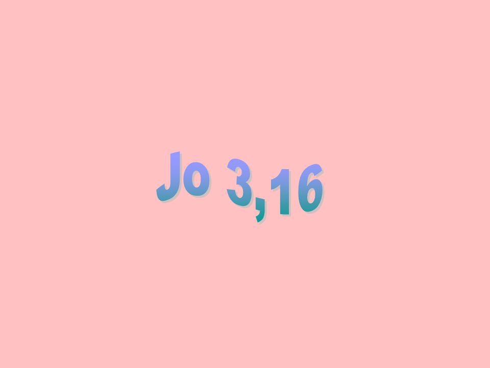 Jo 3,16