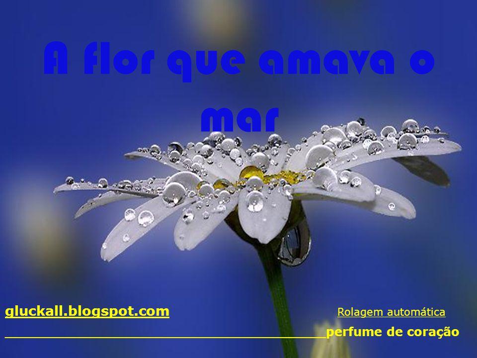 A flor que amava o mar gluckall.blogspot.com Rolagem automática