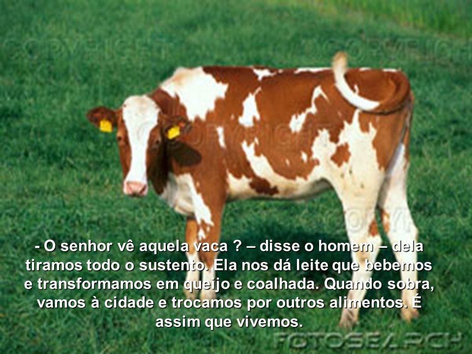 - O senhor vê aquela vaca