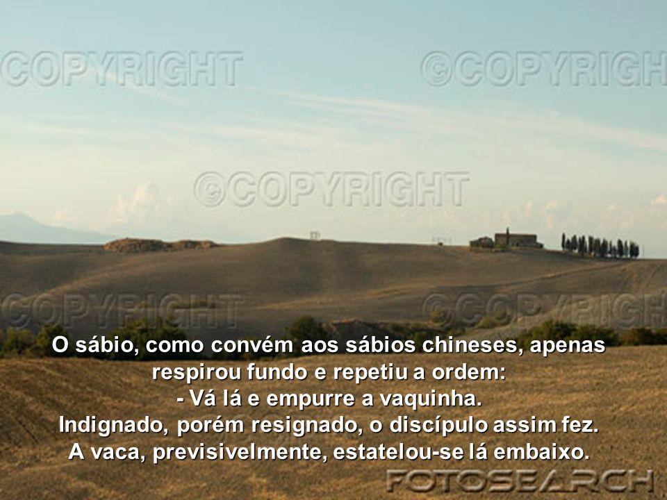 O sábio, como convém aos sábios chineses, apenas respirou fundo e repetiu a ordem: - Vá lá e empurre a vaquinha.