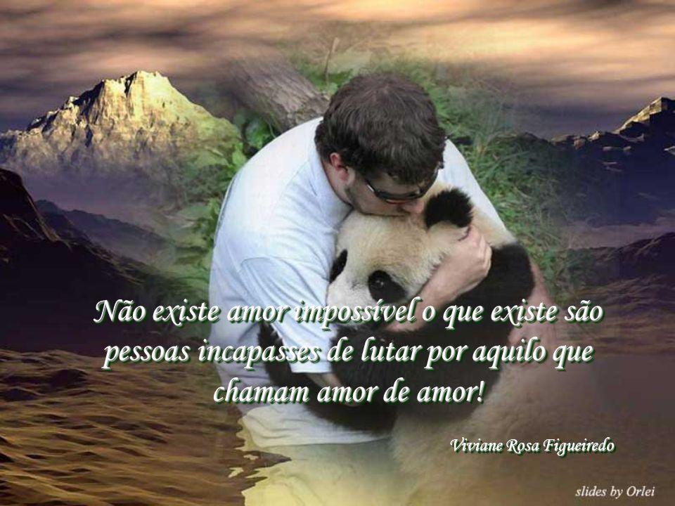 Não existe amor impossível o que existe são pessoas incapasses de lutar por aquilo que chamam amor de amor!