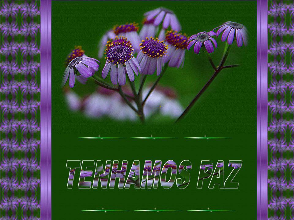 TENHAMOS PAZ
