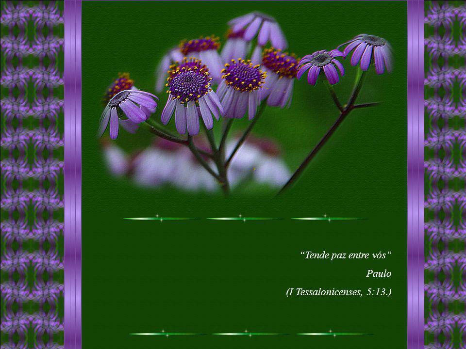 Tende paz entre vós Paulo (I Tessalonicenses, 5:13.)