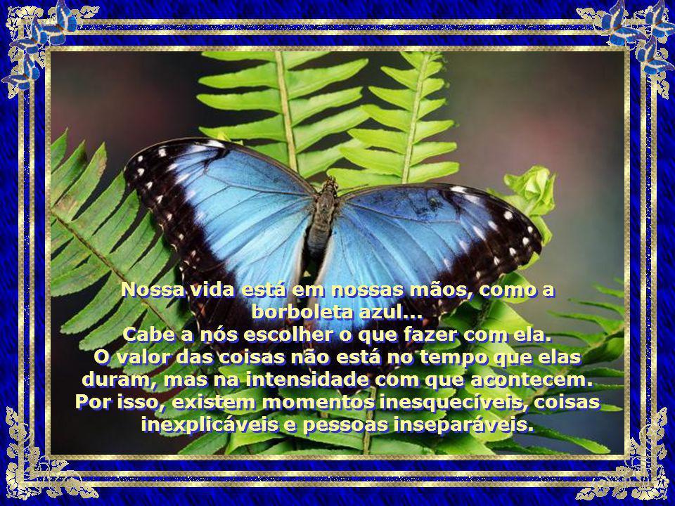 Nossa vida está em nossas mãos, como a borboleta azul...